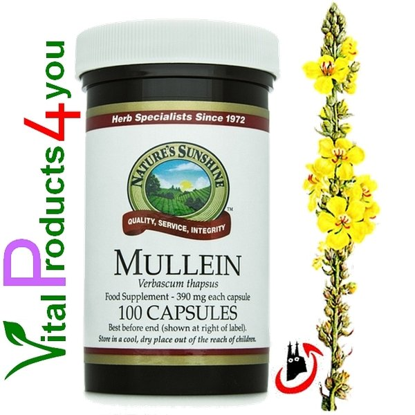 Mullein (Königskerze) Art.-Nr. 460 - Natures Sunshine Products (NSP)